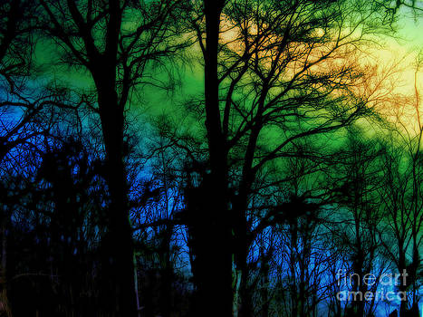 November dream by Anita Antonia Nowack