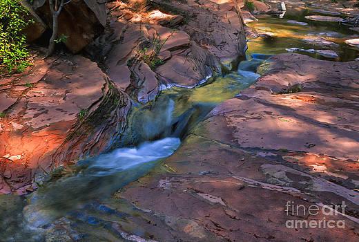 Sandra Bronstein - Oak Creek Canyon Splendor