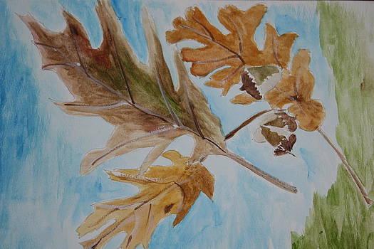 Oak Leaves by Mladen Kandic