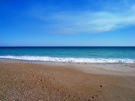 Ocean Blue by Joan Meyland