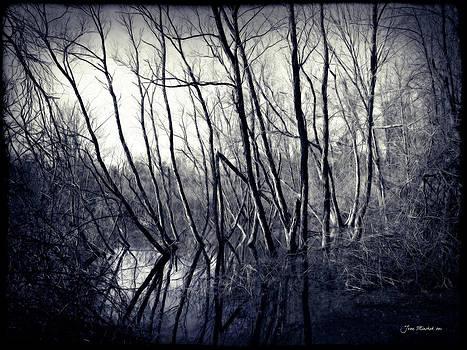 Joan  Minchak - Ohio Metro Pond
