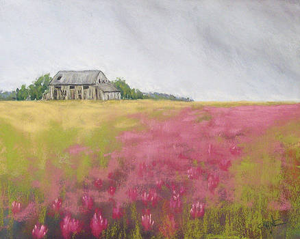 Old Barn and Red Clover by Christine Camp