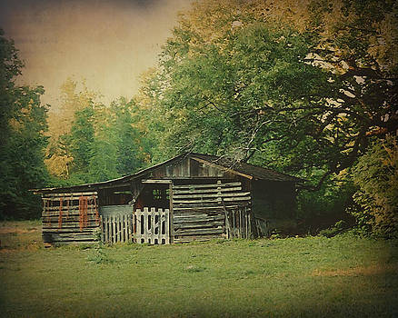 Terry Eve Tanner - Old Barn