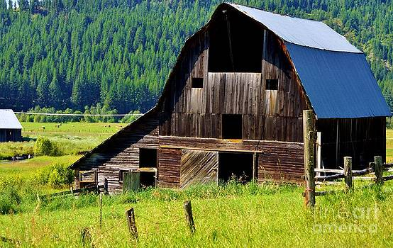 Old Barn by Wendy Emel