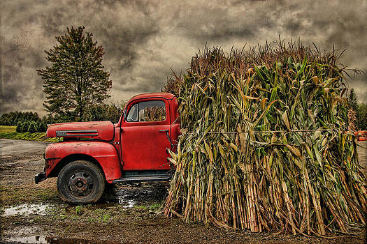 Old Ford Truck by Pat Abbott