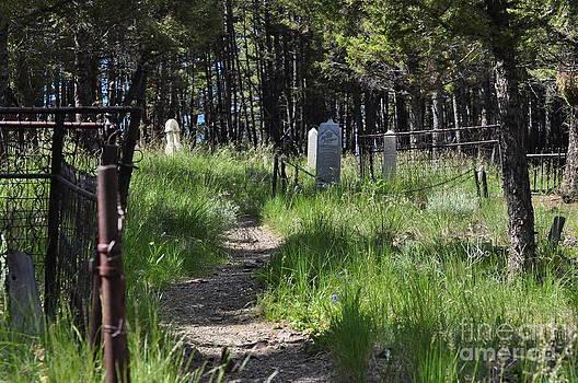 Old Graveyard by Diana Nigon