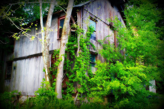 Old House by Melissa Richter