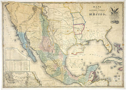 Reproduction - Old Mexico