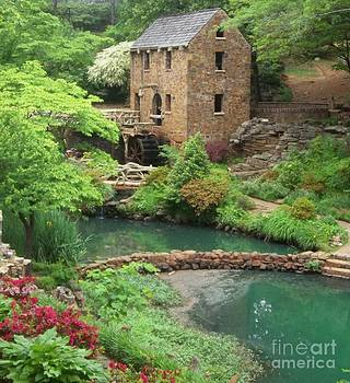 Old Mill by Sandra McClure