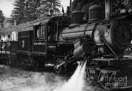 Kathleen K Parker - Old Number Three_Climax Locomotive_Durbin WV _BW