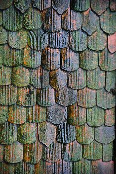 Old Roof Tiles by Jen Morrison