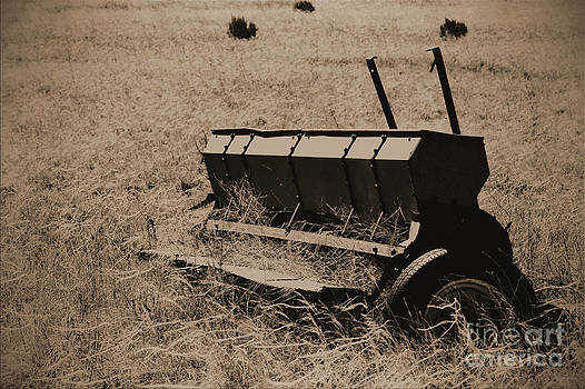 Old Seeder by Val Armstrong