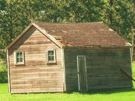 Old Shack by Trish Pitts