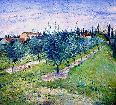 Olive Grove at Graveson Provence France 2004 by Enver Larney