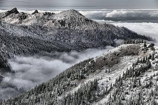 Adam Jewell - Olympic Ridge
