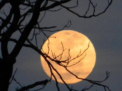 Ominous Full Moon by Eric Barich