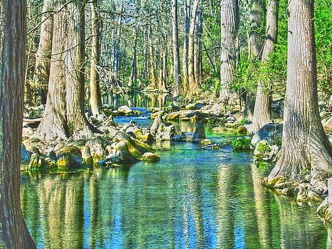 Frank SantAgata - On Honey Creek