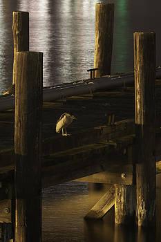 On The Dock by Frank Pietlock