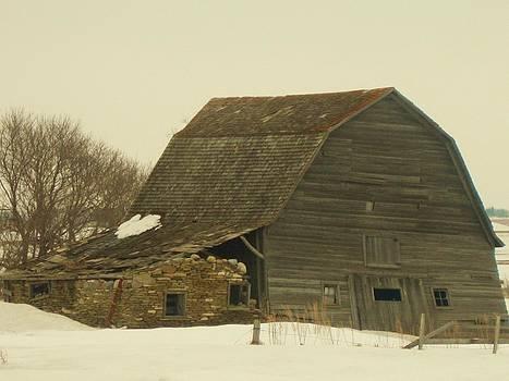 On The Plains of North Dakota by Trish Pitts