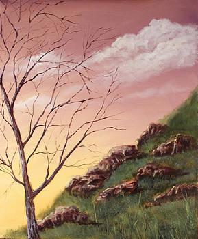 Barry Jones - On the Rocks