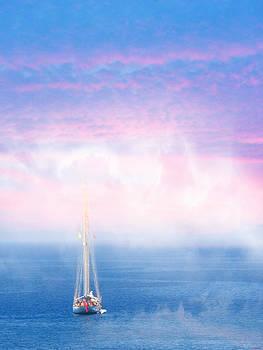 On the sea of Marmara by SM Shahrokni
