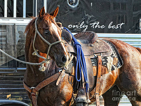 Only the Best by Karen White
