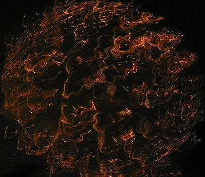 Orange Ball by Brenda Donko
