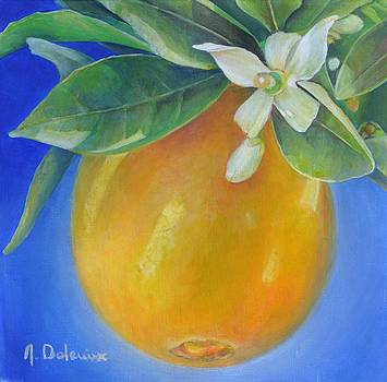 Orange Outremer by Muriel Dolemieux