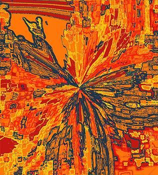 Orange Pinch by Rod Saavedra-Ferrere