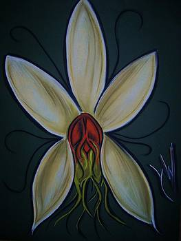 Orchid two by Gay Watters