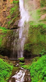 Oregon Wateralls in Green by Nilanjan Chaks