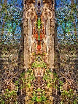 Organic Divide by Lynzi Wildheart