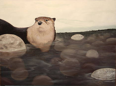 Otter Creek by Sandy DeHaan