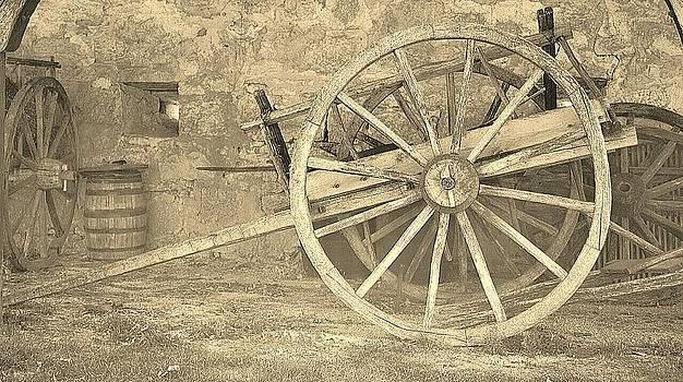 Daryl Macintyre - Oxen Cart