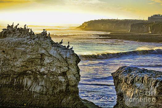 Chuck Kuhn - Pacific Coast II