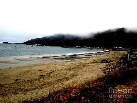 Pacific Coast by J Von Ryan