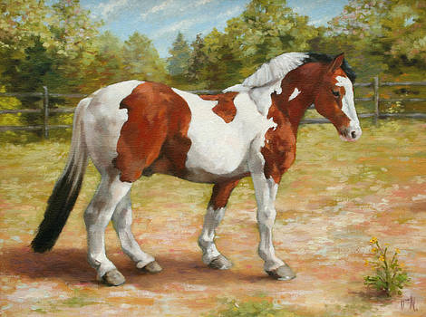 Paint Horse by William Noonan