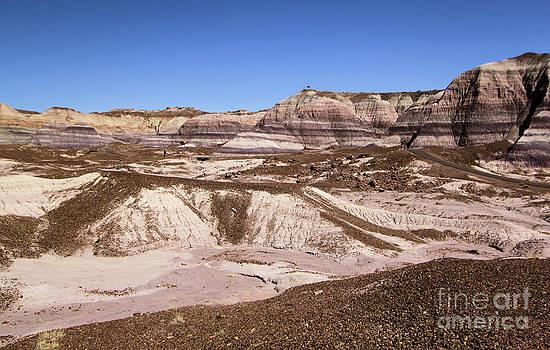 Adam Jewell - Painted Desert Landscape