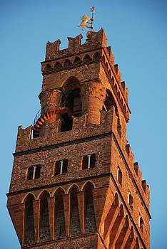 Palazzo Vecchio in Florence  by Dany Lison