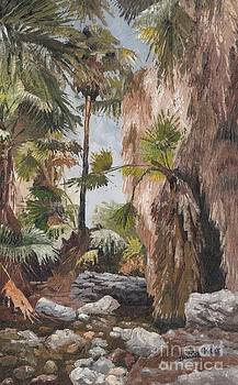 Palm springs by Dumba Peter
