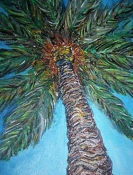 Palm tree by Hannah Curran