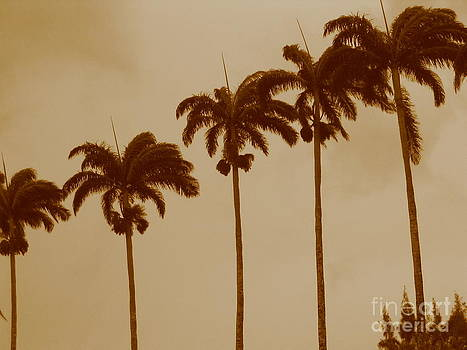 Palms by Barbara Marcus