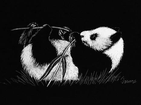 Panda Bear by Jennifer Jeffris