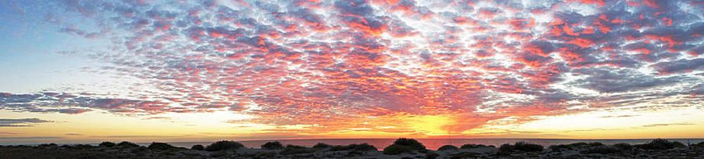 Panoramic beach sunset by John Myers