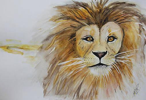Panthera Leo Krugeri 1. by Paula Steffensen