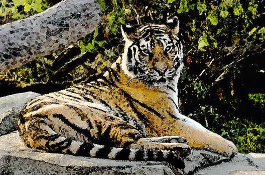 Paper Tiger Watercolor by Michael Austin