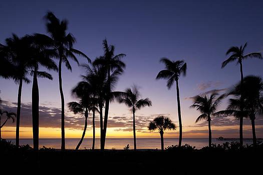 Paradise Sunset by Nick  Shirghio