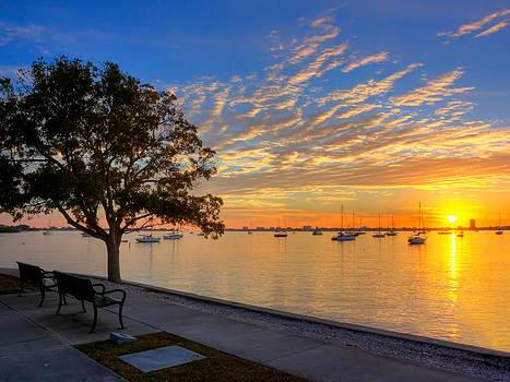 Park Bench Bay View by Jenny Ellen Photography