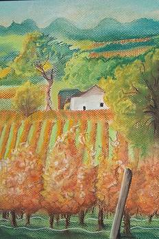 Paso Robles in the Fall by Terry Godinez