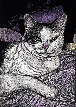 Patches the Cat by Robert Goudreau